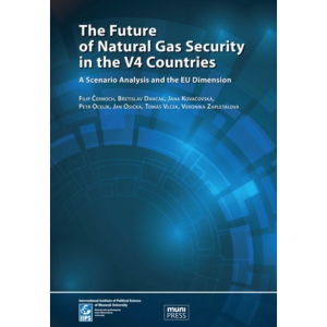 The Future of Natural Gas Security in the V4 Countries. A Scenario Analysis and the EU Dimension